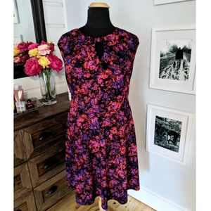 Senna Cap Sleeve Fit and Flare Dress size 22